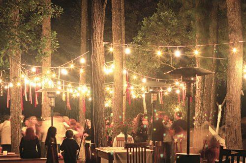 LED - iluminat festiv Ghirlanda decorativa 10m/12xE27  IP44